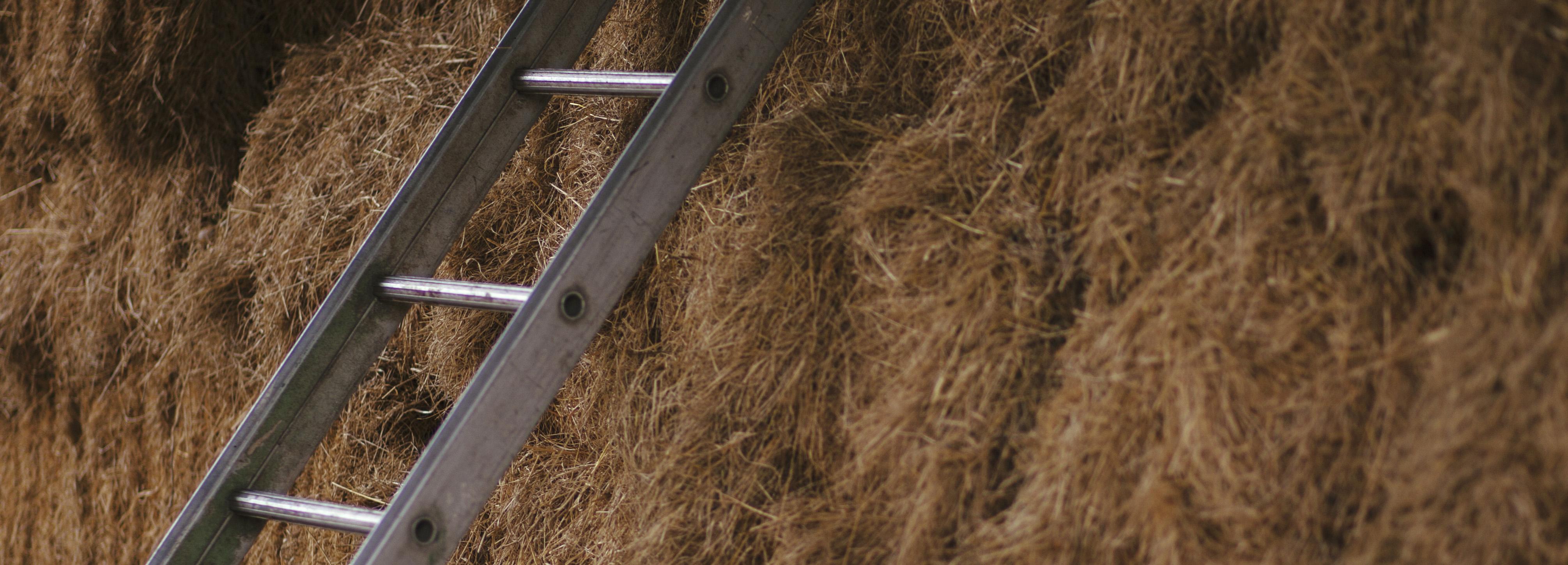 Hay & ladder.jpg 500x 180